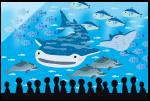 岐阜県 アクア・トトぎふの水族館でイロ・色 スタンプラリーが開催されます!2019.1.31まで