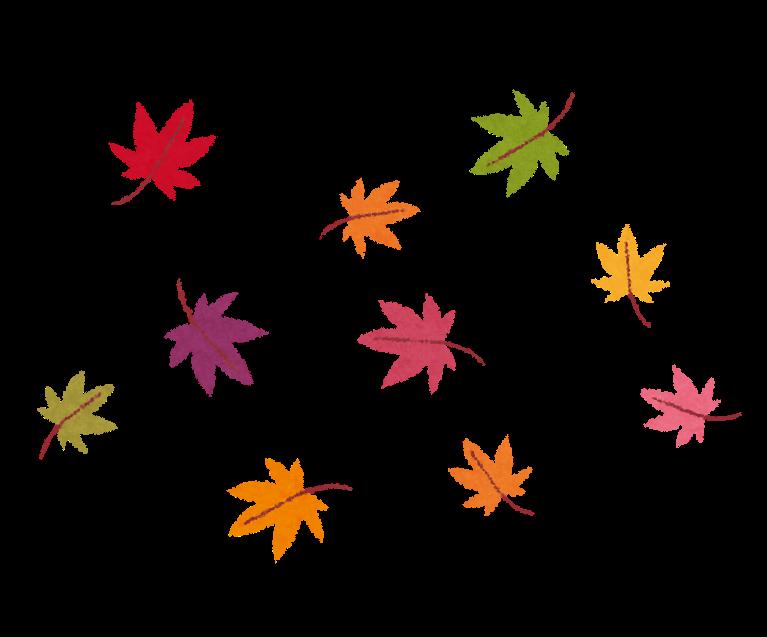 11月11日よご子どもミュージアムで秋の特別イベント開催!秋空の下楽しもう!   滋賀のママがイベント・育児・遊び・学びを発信   シガマンマ ピースマム