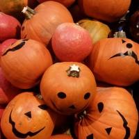 pumpkin-3281081_640