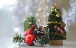 【京都駅ビル】クリスマスツリーイルミネーション2018は11月17日(土)から