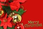 三日月型の「クリスマスリース」を作りませんか!初心者大歓迎なのでお友達と一緒に参加しては!☆要申込