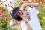 《11月10日(土)》猪子山探検隊『秋をみつけよう』開催