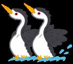 湖北野鳥センターで観察講座が開催!珍しい野鳥と出会うには?長浜市2月15日