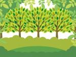 《3月10日》早春の森で自然を感じよう!栗東自然観察の森で「親子観察会」が開催!参加無料♪