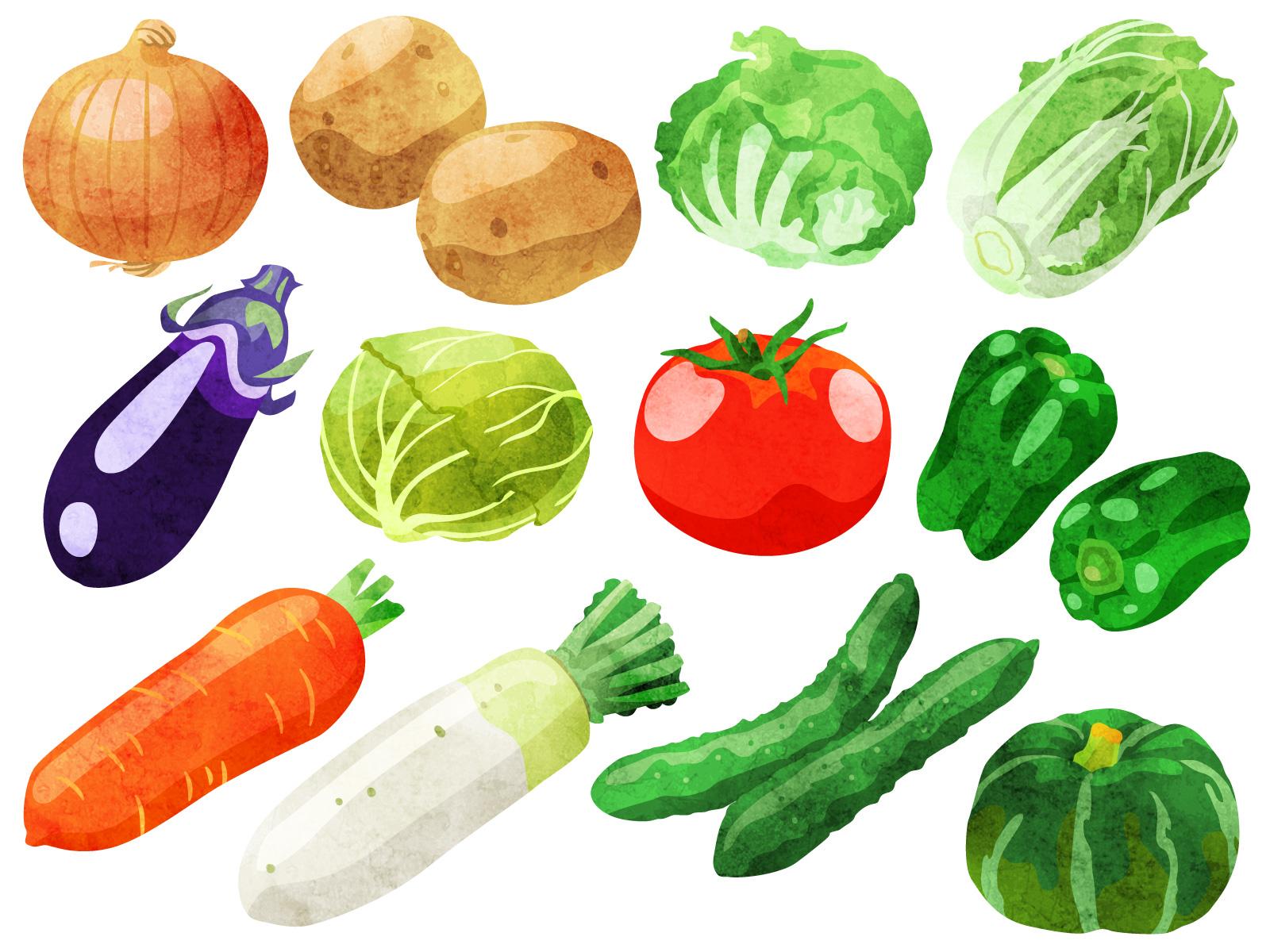 素材 野菜