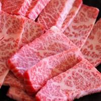 素材 焼肉 霜降り肉