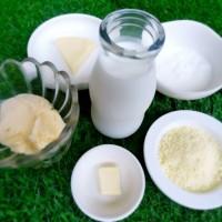 素材 乳製品 牛乳 チーズ 食べ物