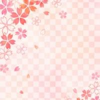 桜_格子_ピンク背景