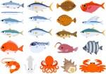 参加無料‼親子で魚をさばいて食べて学ぼう♪湖魚を使ったメニューにも挑戦しよう!【11月14日】海と日本 さばける塾in滋賀