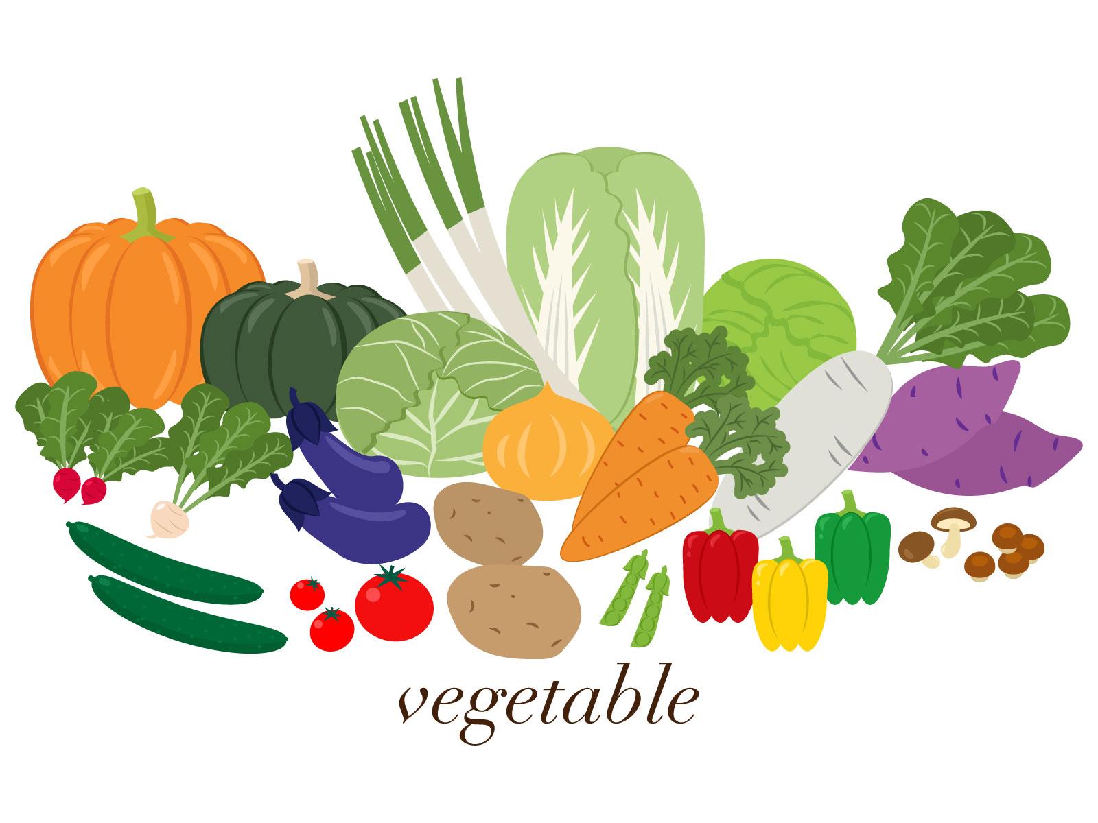 素材 野菜2