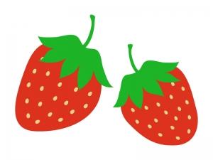 ichigo_strawberry_10956-300x225