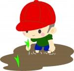 6月1日 彦根市 水土里ふれあい体験の参加者募集中!田植え体験やアイガモの放鳥、地元のお米の試食も!