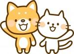 保護されたねこちゃんの里親になりませんか?【8月15日】保護猫譲渡会【ピエリ守山】