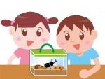 生き物への興味関心を高めよう!草津市のロクハ公園でカブトムシの里親募集!小学生対象♪