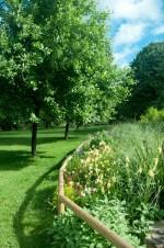 [4月27日]親水わんぱくパーク ゴールデンウィーク初日は野洲川親水公園で自然とふれ合おう♪