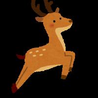 animal_shika_jump2 (1)