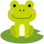 アクア・トトぎふで「カエルクリエイターズフェスタ」開催!いろいろな作家さんのカエル・両生類の作品が大集合!6月8日・9日