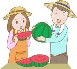 《6月15日・16日》親子で食育!野菜の収穫や料理を体験しよう♪「平和堂 親子で収穫体験」の申込受付中!