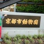 3日間限定!京都市動物園が夏の夜間開園♪動物以外にも楽しみがいっぱいです♪