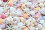女の子に大人気!!「アクアビーズ作り」が suitch ピエリ守山店にて6月15日(土)、16日(日)に開催♪