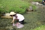 【東近江市】第31回かいどり大作戦!魚つかみ体験もできるよ!〈7月27日〉