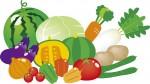 7月5日  滋賀大マルシェ開催♪環境こだわり農産物の夏の収穫祭!