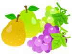 《8月3日〜12日》アグリパーク竜王で「夏まつり〜梨&ぶどうフェア〜」が開催!流しそうめんや動物ふれあいを楽しもう♪