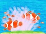 ショッピングモールに可愛いカクレクマノミやチンアナゴ、クラゲなど【7月18日~8月4日】ビバシティ彦根 ミニ水族館