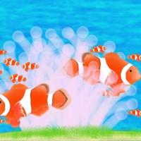魚 水族館 クマノミ