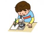 《8月25日》夏の生き物を調査しよう!長浜市のヤンマーミュージアムで「夏のビオトープ観察会」が開催!館内見学もあり♪