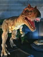 1泊2日の恐竜たいけんキャンプで恐竜博士になれるかも?!11月2日3日・11月9日10日の2回開催、小学生対象