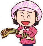 【草津市】参加費無料!稲刈り体験とハサ掛け作業を体験しよう!琵琶湖博物館〈10月6日〉