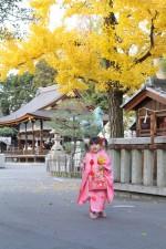 「七五三」おすすめプラン!立木神社(草津)×飲食店コラボ企画2019