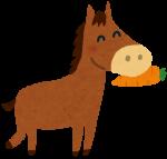 イオンモール大垣に長島の乗馬クラブからポニーのふくちゃんがやってくる!!!!大垣市10月22日