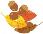 《11月24日》親子で自然体験!大津市のびわこ文化公園(文化ゾーン)にて「しぜんとあそぼ in autumn」が開催!