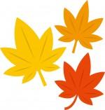 《12月14日》家族で自然学習!大津市のびわこ文化公園(文化ゾーン)で「かんきょう学習 落ち葉のいろいろ」が開催!