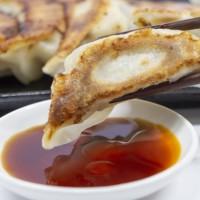 素材 餃子 中華 食べ物