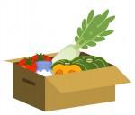 野菜の宅配なら「JAタウン」がオススメ!きてか〜なやおうみんちの野菜BOXも注文可能♪