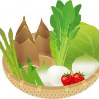 春野菜cs2