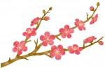 叶匠壽庵の「標野」リニューアル記念!インスタで写真を投稿して豪華賞品をゲットしよう!