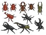 今年の夏もヘラクレスオオカブトがやってくる!ビラデスト今津で『世界の昆虫展とカブトムシの里』開催