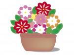 《8月10日》夏休みの自由研究にもピッタリ!草津川跡地公園で小学生向けの「寄せ植え教室」が開催!事前予約制♪