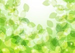《7月25日・8月22日》自然の中でゲームや観察を楽しもう♪大津市のびわこ文化公園(文化ゾーン)にて「しぜんとあそぼ」が開催!