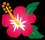 8月10日(月・祝)まで!めんそ〜れ〜大沖縄展★実演販売も!inジェイアール京都伊勢丹