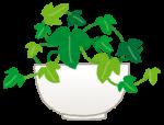 イノブン草津エイスクエア店 オンラインワークショップ「グリーンデコレーション」のイベント開催!【7月21日・26日】