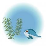 <9/5>湖探検☆琵琶湖に入って生き物をさがそう!琵琶湖の生態系を観察【長浜市】