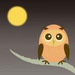 <9/19~21>京都市動物園で秋の夜間開園★アニマル御朱印帳を完成させて特製ポストカードをゲットしよう!