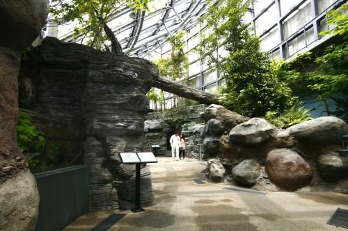 アクア・トト ぎふ 水族館4階
