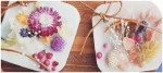 9/19(土)・20(日)ロゴスアウトドアコーナーや、お楽しみ縁日、野菜詰め放題などイベント盛りだくさん!in南草津