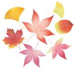 《琵琶湖ホテル》秋の百人一首アフタヌーンティー開催♪和風モンブランをはじめ、素敵なスイーツで秋を感じませんか?